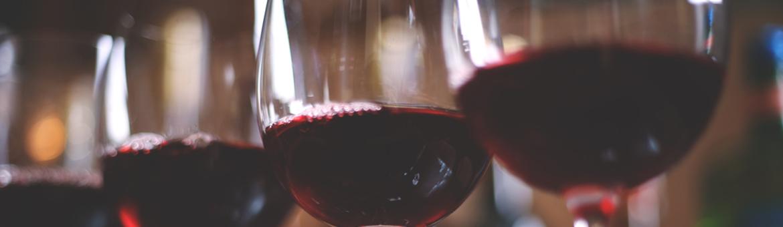 startup du vin winetech