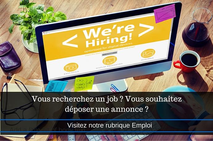 Vous recherchez un job - Vous souhaitez déposer une annonce - (1)