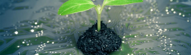 startup de la green tech